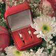 Stock Photo: Pair of engagement rings in red box