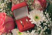 Pair of engagement rings in red box — Stock Photo