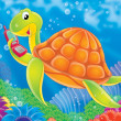 Turtle — Stock Photo #1945462