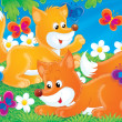 Fox Game — Stock Photo