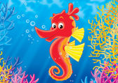 Sea horse — Stock Photo