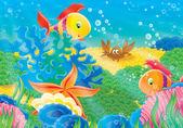 Crabe, étoile de mer, coquille et poissons corail — Photo