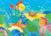 Korallen fische, seesterne, shell und krabben — Stockfoto