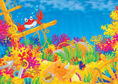Coral reef and Red Crab — Stock Photo