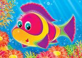 Peixes de coral — Foto Stock