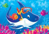 Weißer hai — Stockfoto