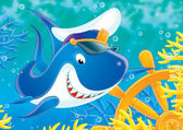 Beyaz köpek balığı kaptan — Stok fotoğraf