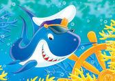 Capitão do tubarão branco — Foto Stock