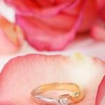 Beautiful Diamond Ring in Rose — Stock Photo #1224197