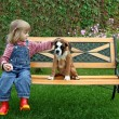 Little girl with the puppy of the boxer — Stock Photo