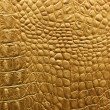 Snakeskin or crocodile texture - Stock Photo