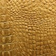 Snakeskin or crocodile texture — Stock Photo #1229120