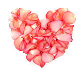 Heart made of petals of roses — Stock Photo