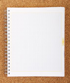 Blank spiral notepad — Stock Photo