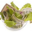 Creative money food — Stock Photo #1233372