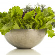 Stock Photo: Fresh herbage
