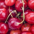 Cherry background — Stock Photo #1272524