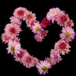 Stockfoto: Flower heart