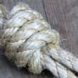 Knot — Stock Photo #1279025