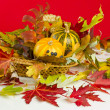 Autumn still life — Stockfoto #1292674