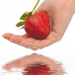 Strawberry in hands — Stock Photo #1296870