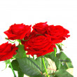 Red roses on white background — Stock Photo #1304271