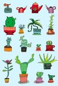 Vector collection of small cactuses — Stock Photo