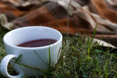 Tea Outside — Stock Photo