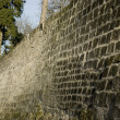 Ancient Stone Wall — Stock Photo #1254013