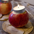 Two Apples with Candles — Stock Photo #1318695