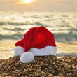 Tropical christmas — Stock Photo #1232894