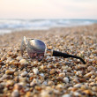 Royalty-Free Stock Photo: Sunglasses at beach sand