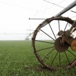 Irrigate fields — Stock Photo