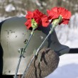 Memory of war. A helmet of the Finnish s — Stock Photo