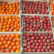 Persimmons and pomegranates in boxes — Stock Photo