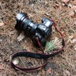 DSLR camera in the forest — Stock Photo
