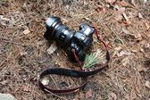 DSLR camera in the forest — Stock fotografie
