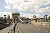 Lion bridge in Budapest — Foto Stock