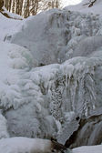 Icefall in the forest — Stok fotoğraf