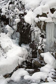 Icefall in the forest — Stock Photo