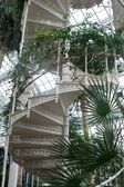Spiral staircase in arboretum — Stock Photo