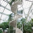 Stock Photo: Spiral staircase in arboretum