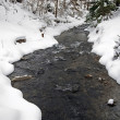 Winter river — Stock Photo #2066746