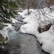 Winter river — Stock Photo #2066755