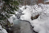 Winter river — Foto Stock
