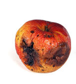 Rotten apple — Stock Photo
