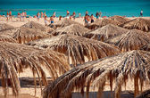 Active on beach — Stock Photo