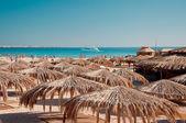 Sunshade beach — Stock Photo