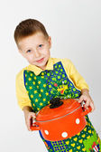 Little cook — Stock Photo