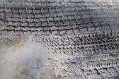 следом шин — Стоковое фото